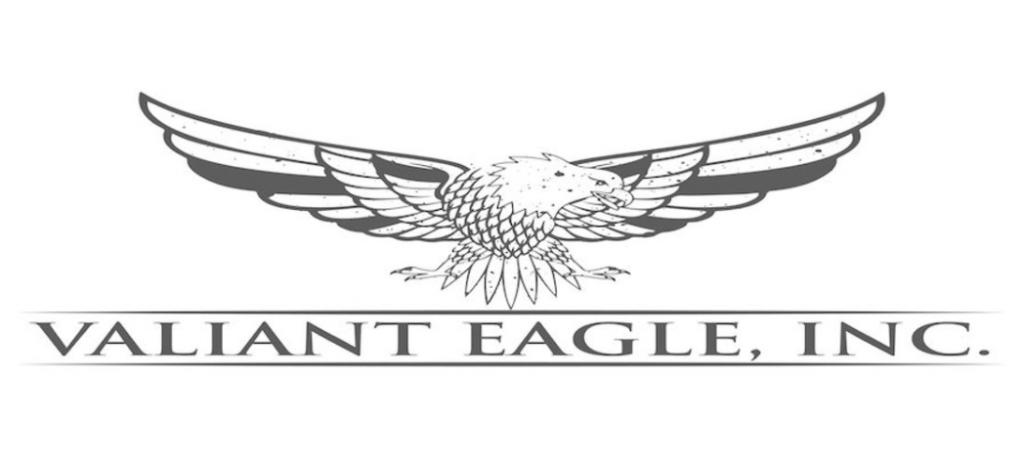 an illustration of an eagle above company name Valiant Eagle Inc